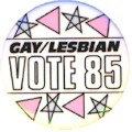 Gay/Lesbian Vote 1985 - New York City